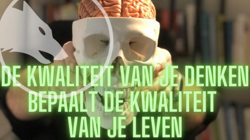 hersenen slimmer maken